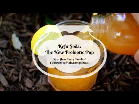 Podcast Episode 6:  Kefir Soda - The New Probiotic Pop
