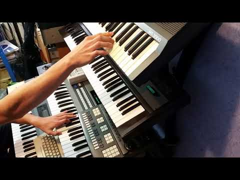 Laserdance - Moon dusk LIVE CHILLOUT COVER/REMIX with vintage synths