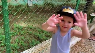 CADU EM:  Um Dia no Zoológico com a Família!