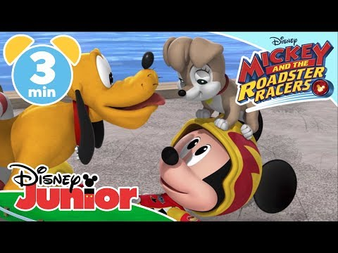 Mickey And The Roadster Racers |  Phoebe The Puppy Is Lost  🐶 | Disney Junior UK