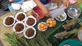 Asian food in nakhon phanom - Thai street food vdo
