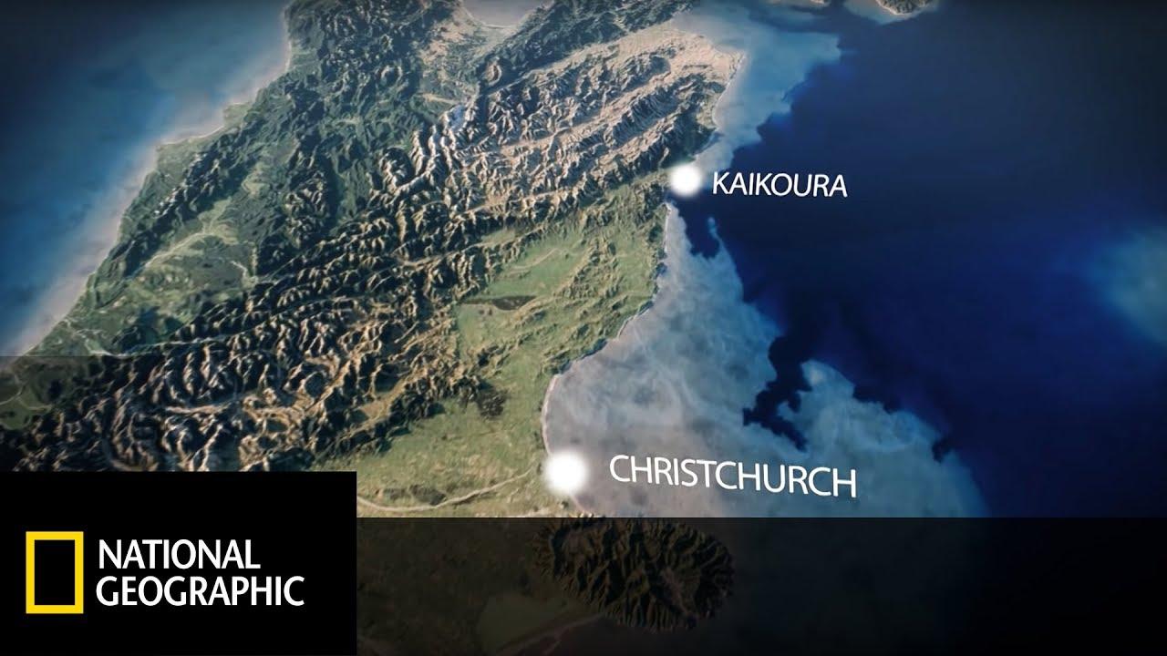 Strzelanina W Nowej Zelandii Film