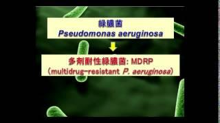 院内感染関連微生物(新しい話題の感染症の種類と特徴を含む) 松本 哲哉