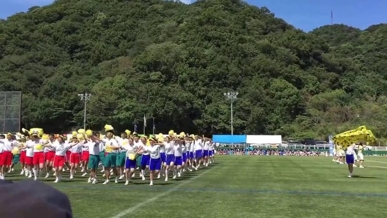 高校 和歌山 近畿 附属 大学