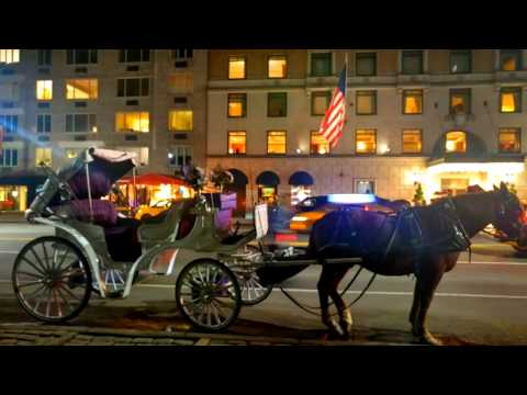 Central Park 2017 Christmas Fairytale Horse & Carriage Ride, Manhattan, New York City, USA