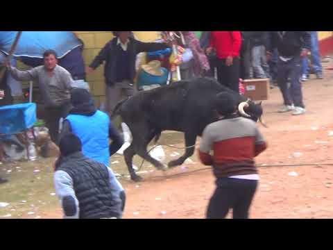 corrida de toros chaccllatacana 2016