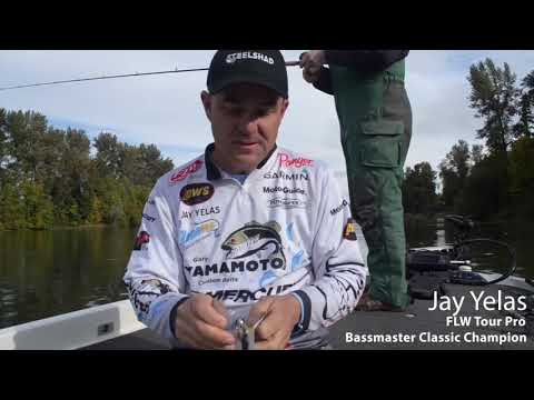 jay-yelas-talks-about-how-to-crank-a-steelshad-lure!