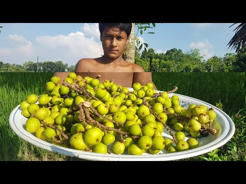 Cluster Fig & Eggs Fry (Dumur Vazi) | Very Rare Tasty Village Food Recipe | Ever Eat?