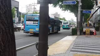부산 금정구 롯데 마트 사라진 후 부산버스들(2)