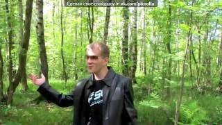 Шашлыки 28 06 2012 г под музыку Радио Ваня   Супер мега шашлыки  Picrolla