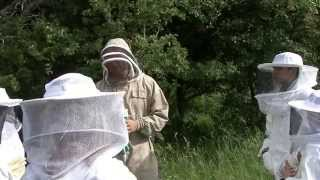 brn og bier