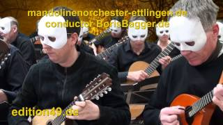Taylor Swift Mandolin Orchestra I knew you were trouble Guitar Cover Instrumental Zupforchester