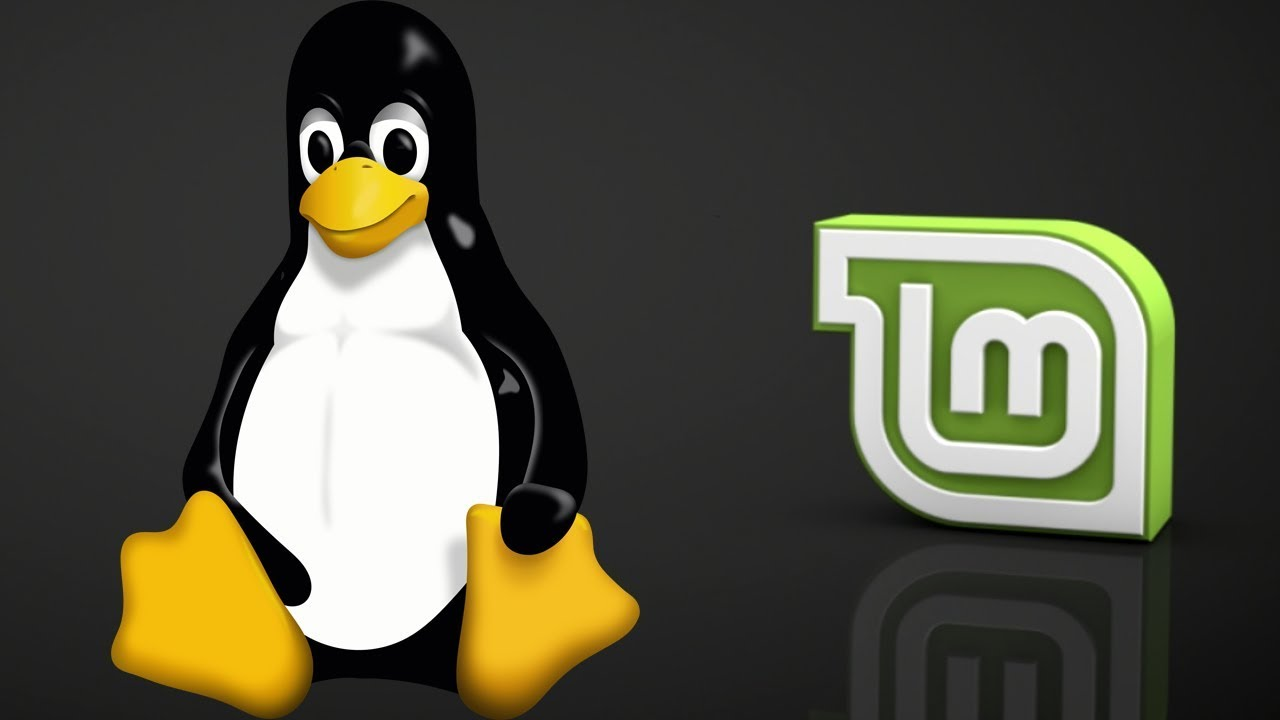 Linux Mint Programme Installieren