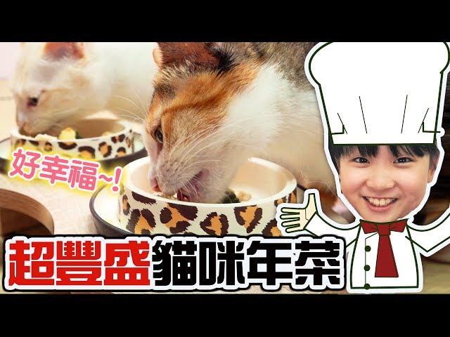 【貓日常】超豐盛貓咪年菜~貓咪也要吃年夜飯[NyoNyoTV妞妞TV玩具]