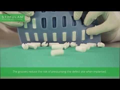 Biocomposites exhibition video loop