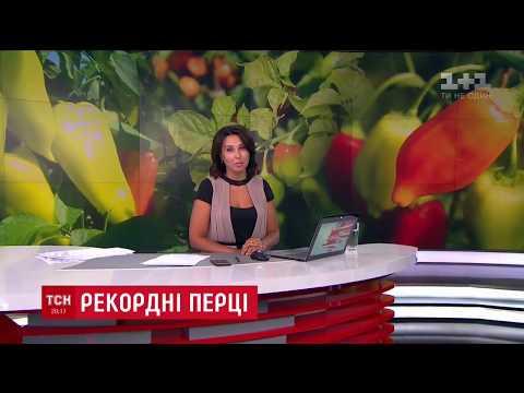Перец Геркулес попал в книгу рекордов Украины     79 гектар перца высадили на Херсонщине в 2018 году   супермаркета   выращивать   сладкого   геркулес   семена   овощей   хаски   перца   овощи   как