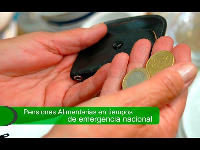 Pensión alimentaria en época de emergencia nacional