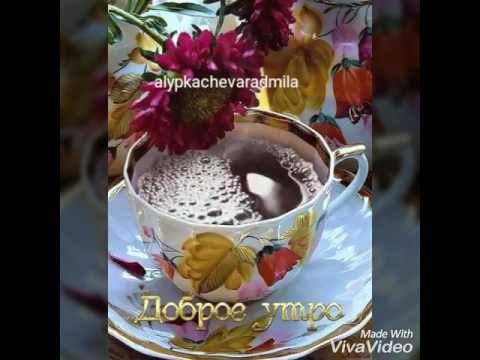 Вера Брежнева - Доброе утро (Золотой граммофон 2014)
