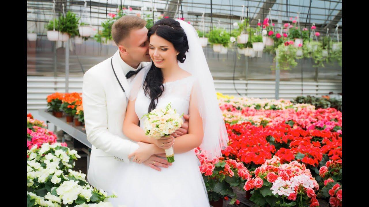 462be74ef87920 Весільний фотограф, відео оператор. Хмельницький. 067-38-48-114 ...