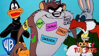 Looney Tuesdays | Taz! Wants! Rabbits (And Ducks)! | Looney Tunes | WB Kids