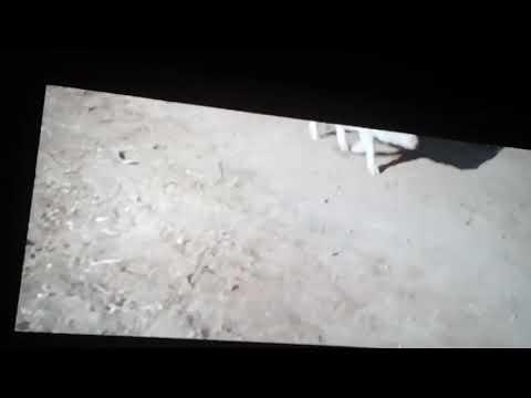Фильм  Белое вино из Баббудойу