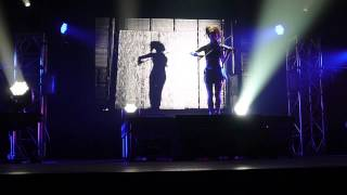 Shadows - Lindsey Stirling Live Performance @ Tokyo, Japan Mar/7/2015