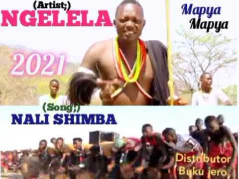 Download NGELELA SAMOJA_-_NALI SHIMBA_2021.Mp3