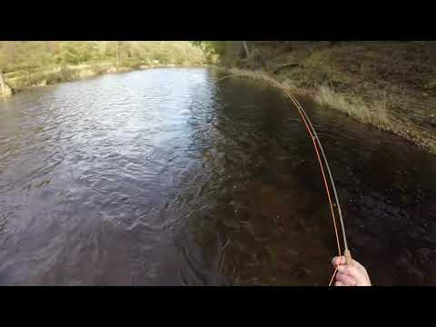 Grayling Fishing With The Wet Fly On The Welsh Dee At Llangollen
