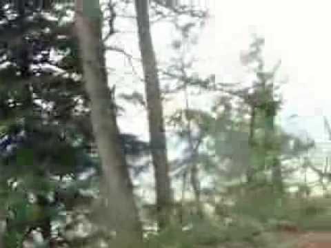 Mount Thom Hike Movie 001