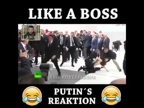 Путин...нападение украинок ...Меркель в шоке