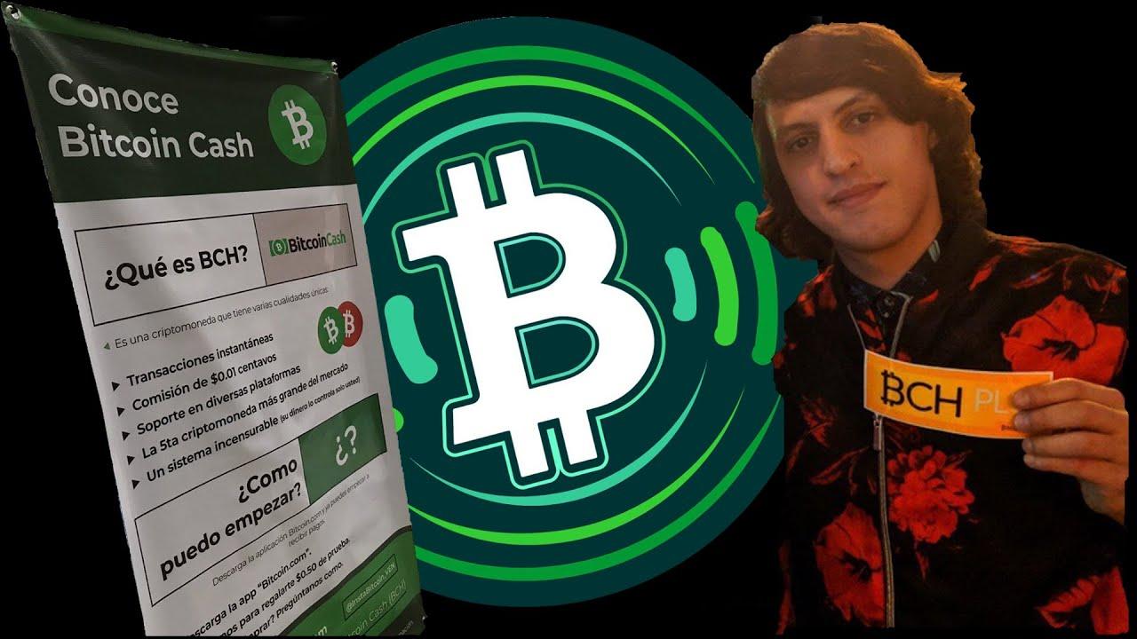 Geriausios bitcoin įmonės investuoti į, kaip bitkoinas kasamas?