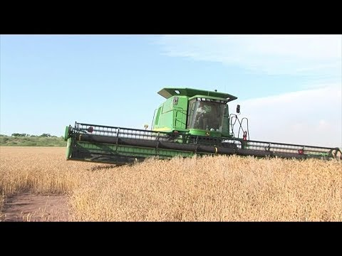 Custom Cutters 09 How to cut a terrace with a John Deere 9660  Combine