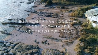 After the Storm - 白浜フラワーパーク