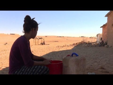 Refugees in Algeria yearn for homeland in Western Sahara