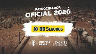 BB Seguros - Patrocinadora oficial do Confina Brasil 2020