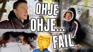 Alltag mit Hund und sehr interessante Neuigkeiten! - Vlog 116