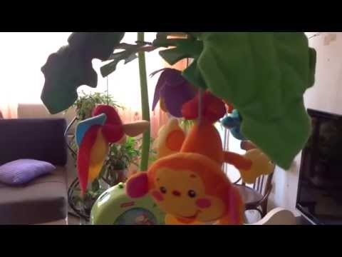 Fisher-Price Rainforest Peak-a-Boo Leaves Musical Mobile