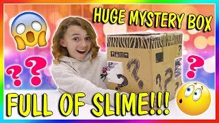 HUGE MYSTERY BOX OF SLIME!   We Are The Davises