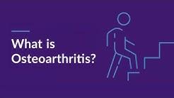 What is Osteoarthritis? (Degenerative Joint Disease)