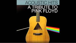 "Pink Floyd ""Wish You Were Here"" Acoustic Hits Cover Full Song"