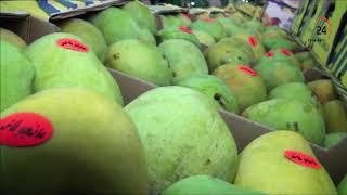 جولة داخل سوق المانجا بالإسماعيلية أشهر الأنواع وأسباب شهرتها