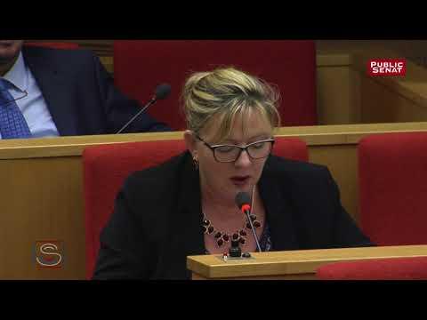 La sénatrice Michelle Gréaume interroge un dirigeant de Carrefour