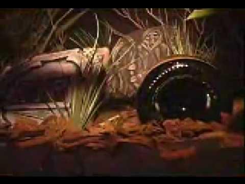Veuve Clicquot Yelloween 2007 Puerto Rico