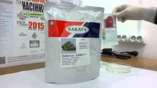Сама F1 семена кабачка (Sakata),  Антифейк  Часть 28(, 2015-07-26T08:02:08.000Z)