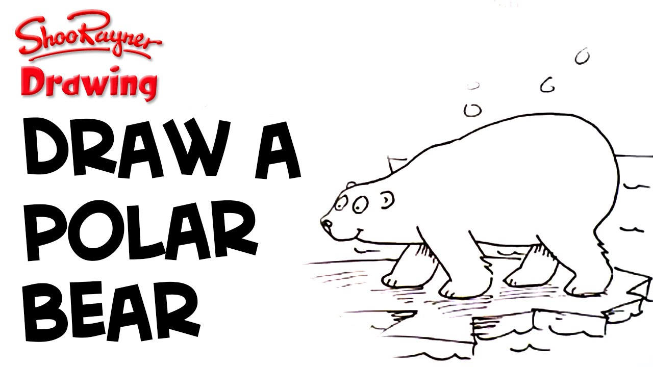 Learn to draw polar bears