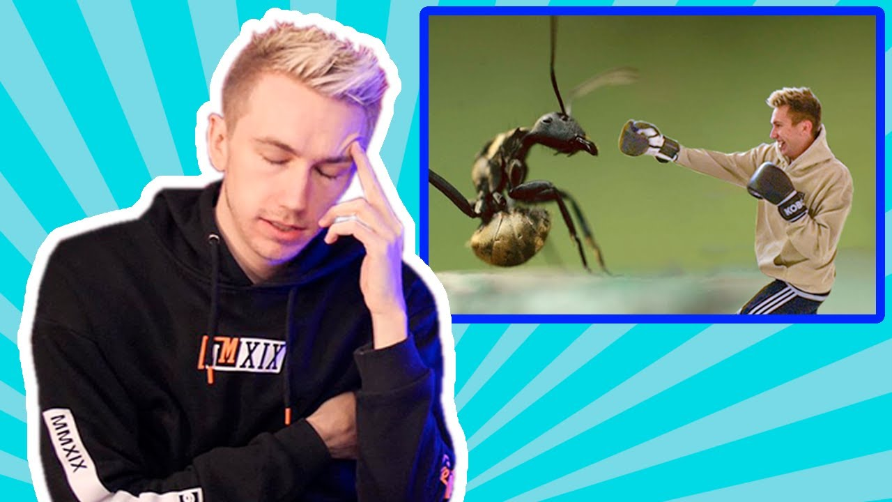 Fighting 100,000 Ants?? - The HARDEST WOULD YOU RATHERS??
