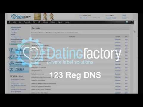 dating factory dns