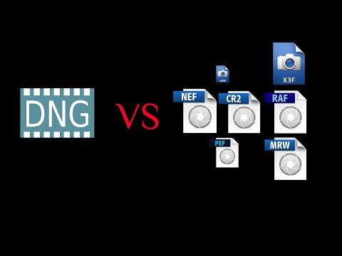 DNG vs proprietary RAW formats