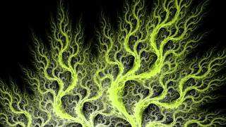 Louisa John-Krol - Anemone Falling
