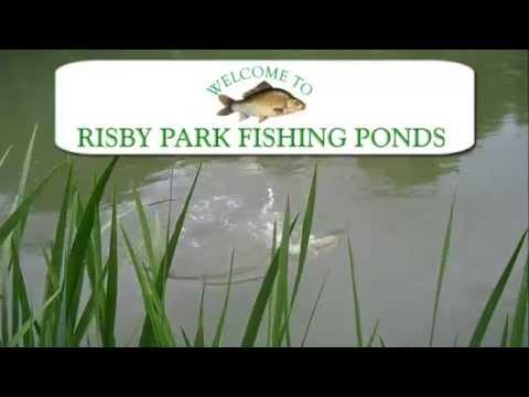 Risby Park Fishing Ponds | East Riding Of Yorkshire UK